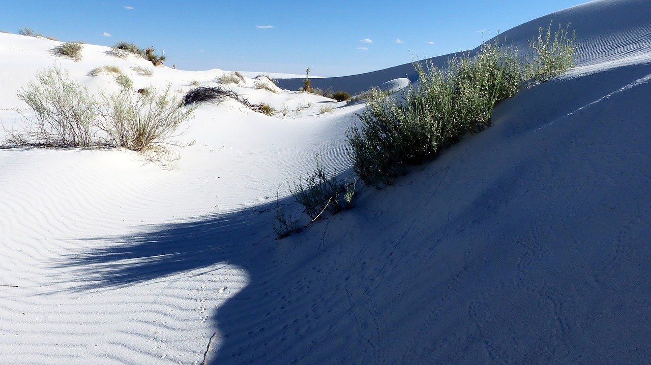 desert, sand, gypsum-3562205.jpg